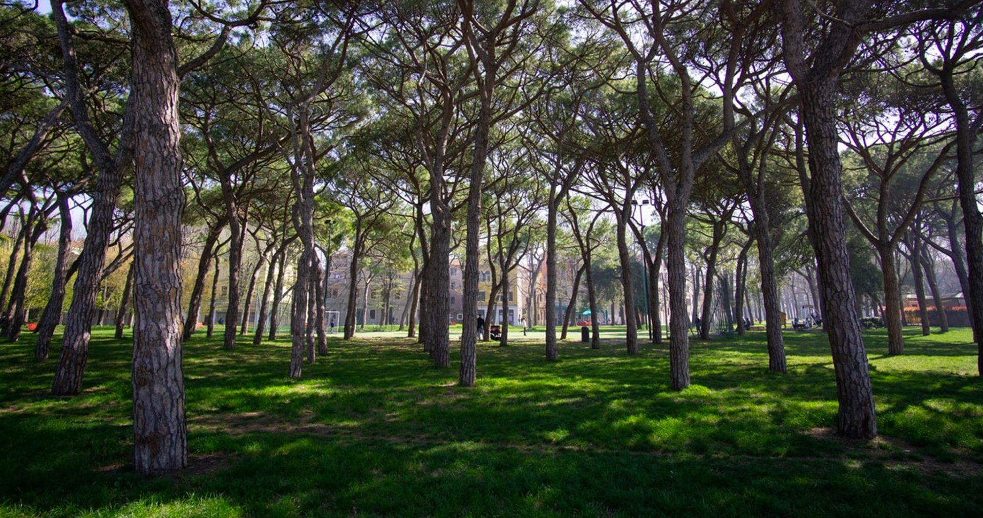 Manutenzione Giardini Milano E Provincia la spesa dei comuni per il verde urbano e la tutela